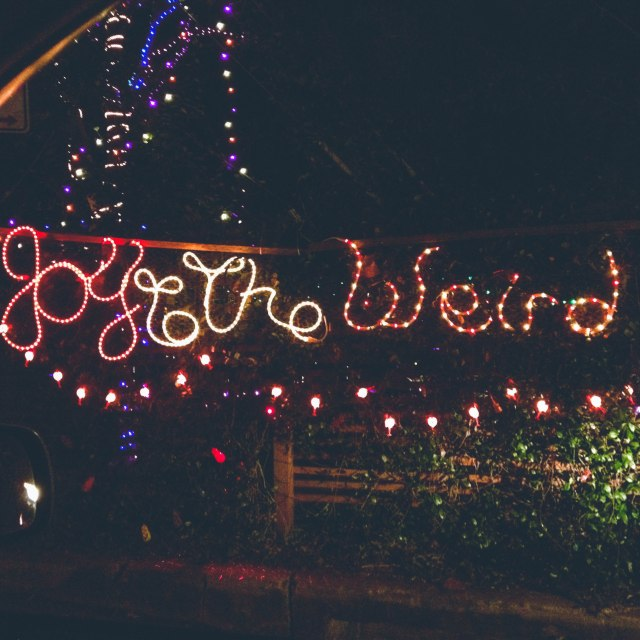 Christmas lights in typical Austin fashion.